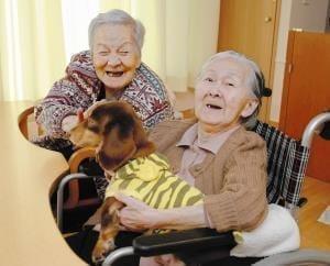ペットと住める有料老人ホームの特集|LIFULL介護(旧HOME'S介護)