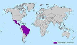 ジカ熱の流行…「緊急事態」だからこそ冷静に