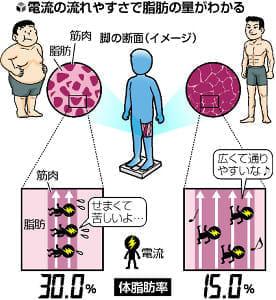 体脂肪率測る仕組みは?