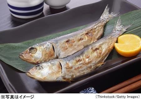 魚による「ヒスタミン中毒」、4つの予防策