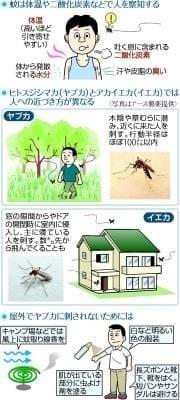 なぜ蚊に刺される?