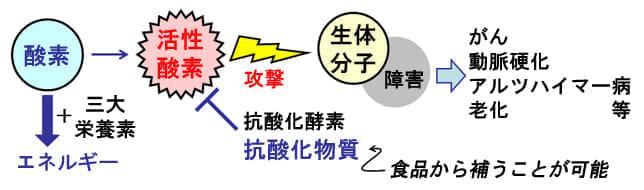 図:ヨミドクター第21回