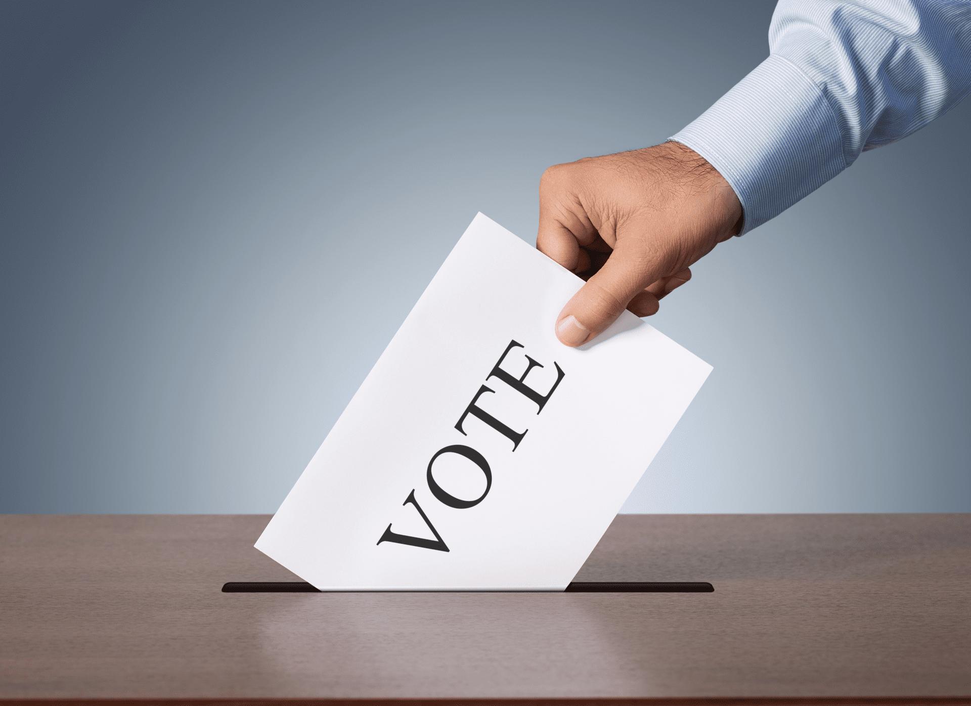 大統領選挙の投票カット