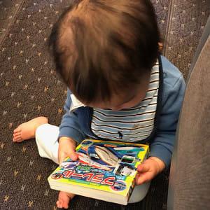 プラレールの本が愛読書で、1人で開いて見ています