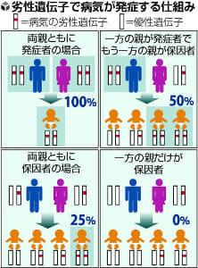 「将来の子」遺伝病予測、両親検査し発症率判定…国内企業計画