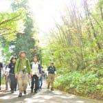 頑張りすぎないクアオルト健康ウォーキングで、散策する人たち(2016年10月、山形県上山市提供)