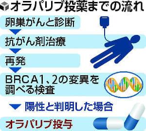 遺伝性がん国内初の治療薬、来年にも承認…「卵巣」対象