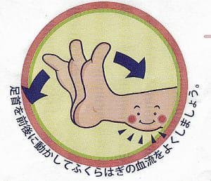 エコノミークラス症候群で死亡8例…足首を前後に動かす運動で予防を
