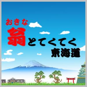 tokaido300-300