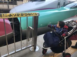 はやぶさに乗って仙台に行きました