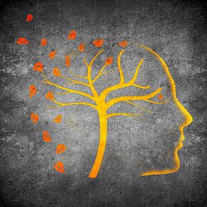 朝丘雪路さんを襲ったアルツハイマー型認知症は「死に至る病」