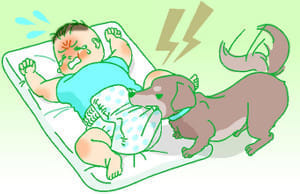 不慮の事故(7)赤ちゃんペットにかまれ危険