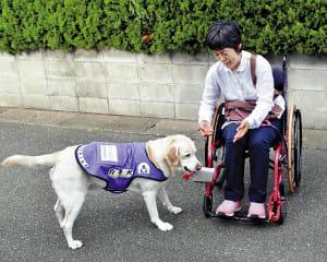 支える犬たち(中)介助犬 日常の我慢を解消