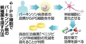 「パーキンソン病」治療薬候補、iPS細胞を使って既存薬から発見