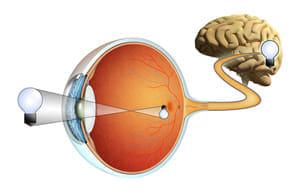 視神経炎に新タイプ 再発防ぐために維持療法が有効