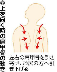 体の上手な使い方(下)肩甲骨と背筋 意識して