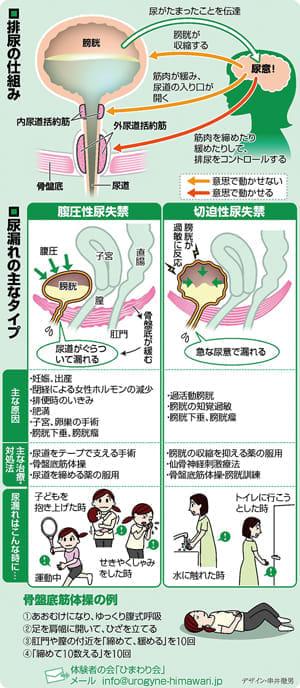 女性の尿漏れ…骨盤底筋 鍛えて予防