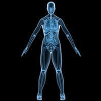 「教科書に患者を当てはめる」 臓器別の医療で痛みは治せるか?