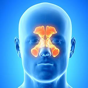 気づきにくい鼻のがん…喫煙や粉じん 原因に