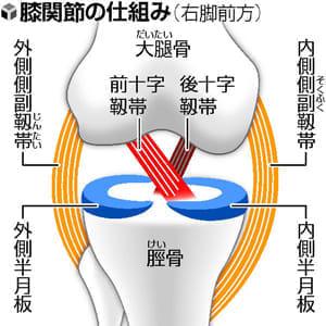 膝治療 手術や筋肉強化で…成長期の肘酷使に注意(仮)