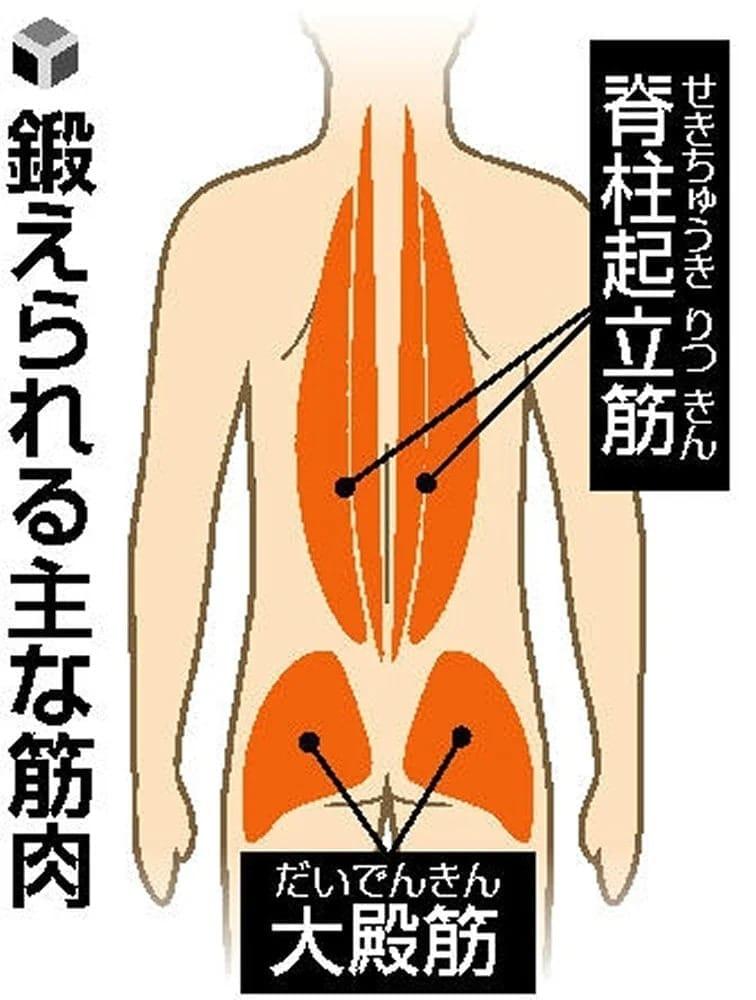 谷本道哉の【すぐやる健康体操】背筋運動編