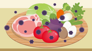 食中毒に注意…予防するための共通のポイントとは?