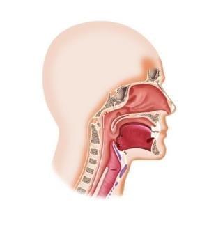 マスク熱中症にご用心 口呼吸にもなりやすく メリハリある使用を