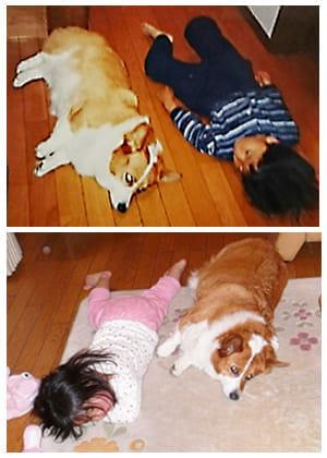 次男(上)と9歳下の長女(下)。思えば、この犬にはずっと助けられた