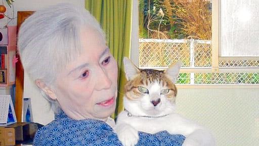 [愛猫と暮らしたい](下)ホームに一緒に入居、病状は劇的回復「今が至福の時」