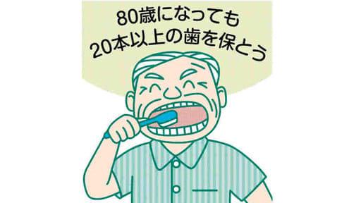 「健口」で健康(19)日頃の手入れで歯長持ち