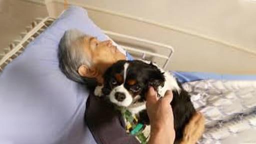 神経難病と闘う(3)亡くなる2日前まで愛犬支えにリハビリ 医師も驚く奇跡的頑張り