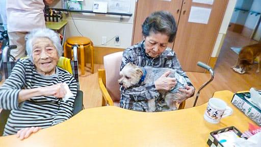 「高齢者がペットを飼うのはわがまま」は正論だが、判断力や自制心の衰えは誰も避けられない