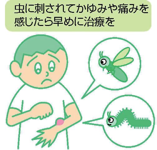 皮膚のトラブル(3)虫刺され 早めの治療重要