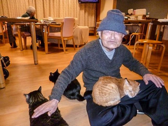 トラを膝に乗せ、ほかの猫にも囲まれ、うれしそうな斎藤さん