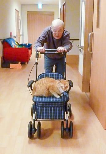 トラと一緒にリハビリを頑張る斎藤さん