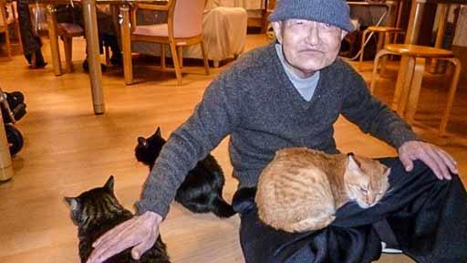 癒やし猫(上)ペットの猫を亡くし、認知症になった男性 ホームでトラと出会い…
