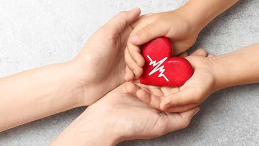 臓器移植ドナー増えてる?