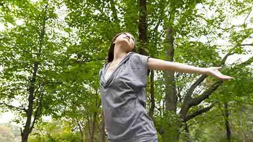 ストレス対処力アップに森林浴
