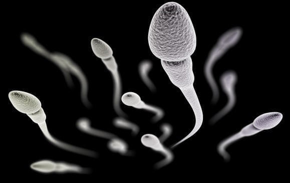 顕微授精にも限界 保険適用で考える生殖補助医療が「できること」「できないこと」