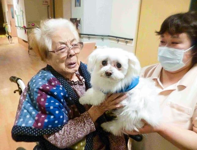 愛犬のベラちゃんとの1か月ぶりの再会に涙を流す角井さん