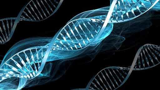 広がるがんの遺伝子解析 患者への十分な説明と理解重要
