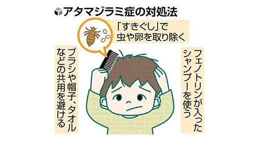 皮膚のトラブル(15)アタマジラミ症 洗髪で予防