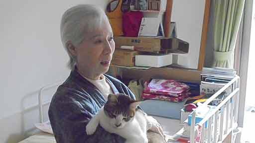 猫の「祐介君」は虹の橋へ旅立ちました…大好きなお母さんの顔をまぶたに焼き付けて