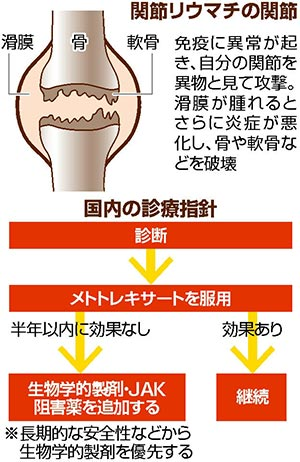 関節リウマチ 薬で進行抑制