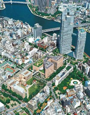 奥の高層ビルが聖路加ガーデン、手前の建物が聖路加国際病院